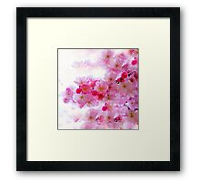 Cherry Blossoms So Pink Framed Print