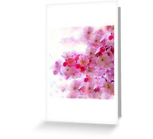 Cherry Blossoms So Pink Greeting Card