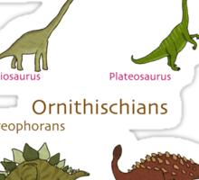 Dinosaur Classification Sticker