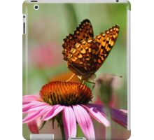 Poised For Takeoff iPad Case/Skin