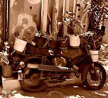Motorbike Planter by MoniqueFlynn