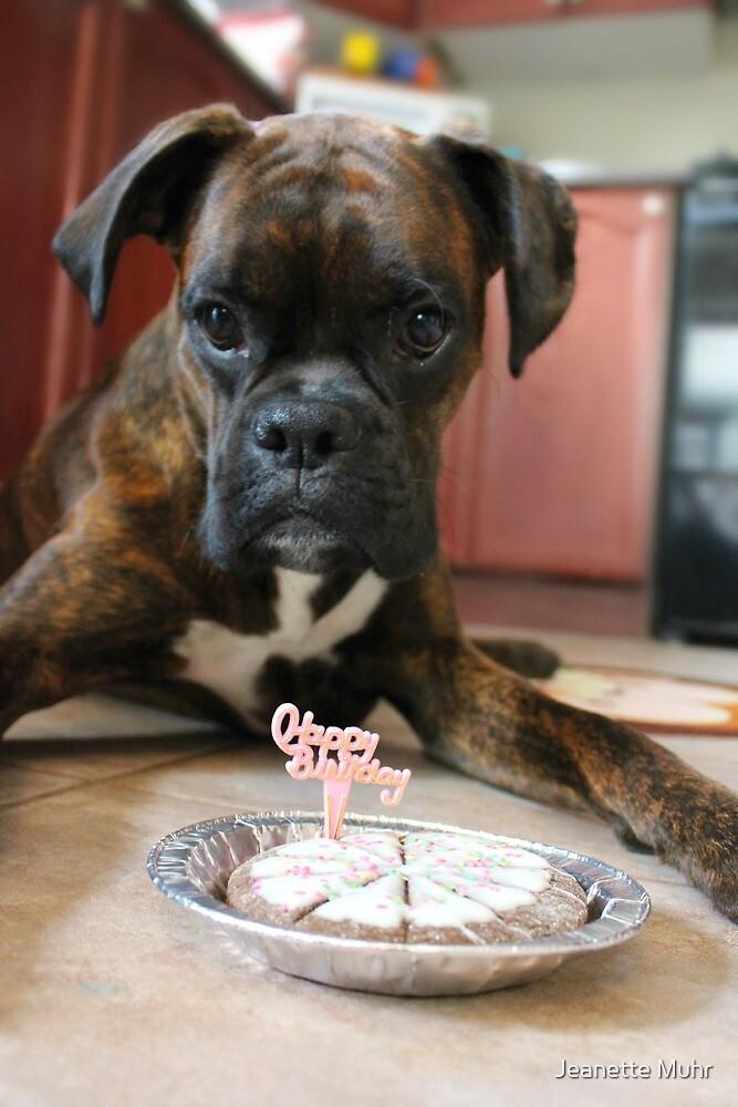 Happy 1st Birthday by Jeanette Muhr