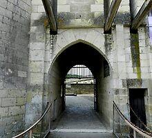 Enter Chateau Langeais by hans p olsen