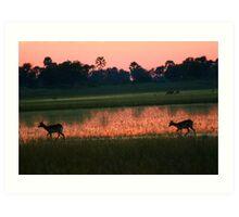 A Delta sunset Art Print
