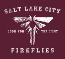 Salt Lake City Fireflies by brightshark