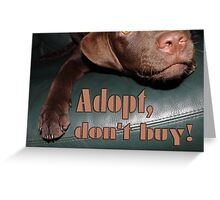 Adopt don't buy Greeting Card
