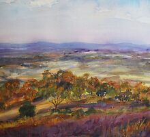 View from Pokolbin Mountain, Hunter Valley NSW by Terri Maddock