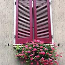 Window with flowers by Segalili