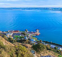 Stanley, Tasmania #2 by Elaine Teague