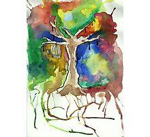 ColourTree Photographic Print