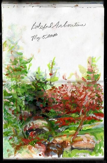 England Sketchbook, Batsford Arboretum by Cameron Hampton