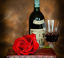 Literary Red Wine by mlphoto
