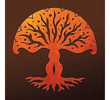 Tree of Life, Woodcut (viviána) Photographic Print