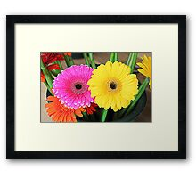 Flowers - HDR Framed Print