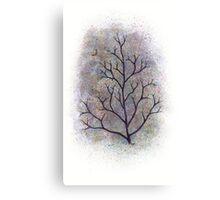 maine has trees Canvas Print