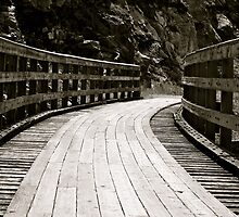 Pathway to the Past by dmacneil