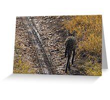 I am walking - Serval Greeting Card