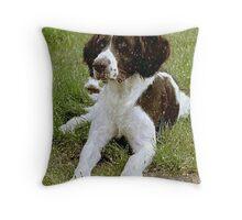 Drentse Partridge Dog Portrait  Throw Pillow