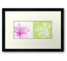 Transparent flower Framed Print