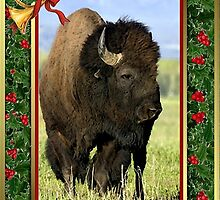North American Bison Buffalo Blank Christmas Card by Oldetimemercan