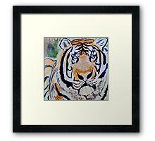 Tiger Quest Framed Print