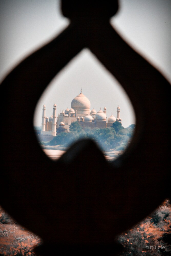 View from Agra Fort by tutulele