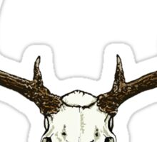 Mule deer skull Sticker