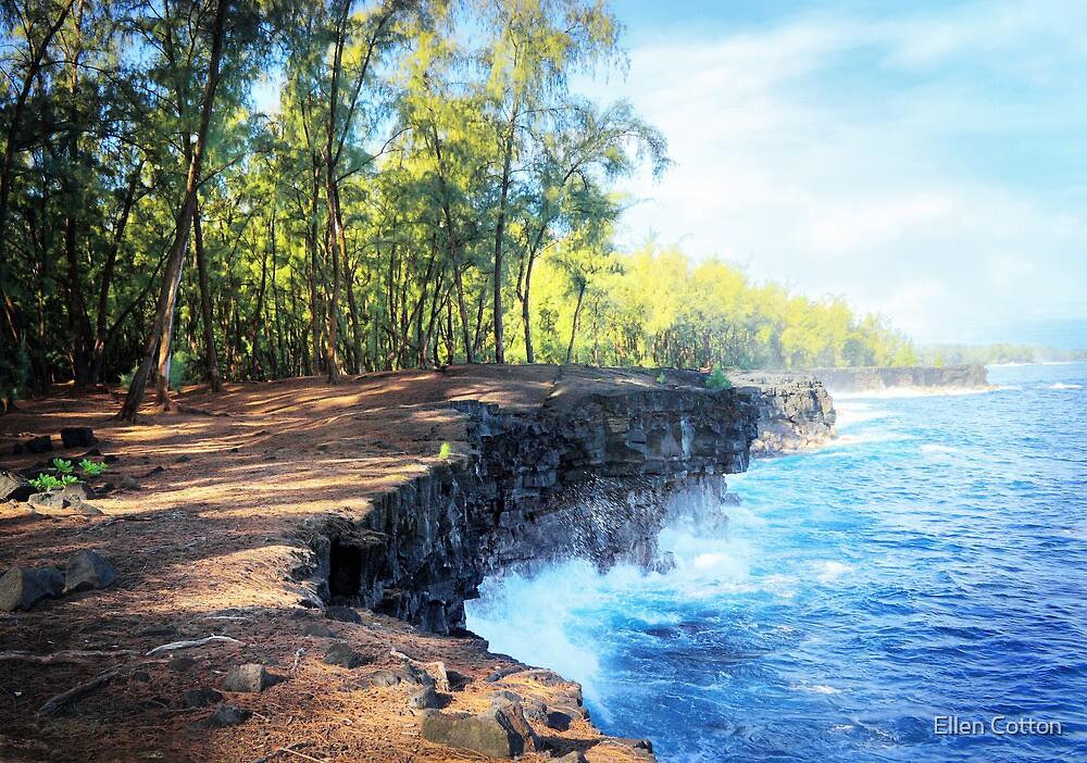 Kaloli Point, Hawai'i by Ellen Cotton