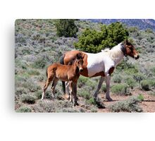 Mama and baby Virginia City Highlands,Virginia City Nevada USA Canvas Print