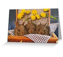 Dandelion Bunnies Greeting Card
