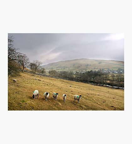 Misty Day in the Yorkshire Dales Photographic Print