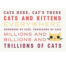 Millions of Cats Photographic Print