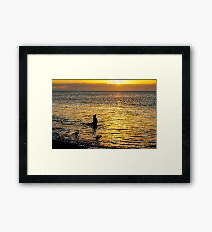 Sunset on Rabida Island Framed Print