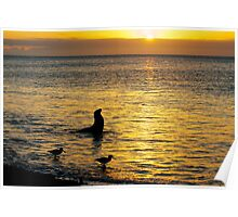 Sunset on Rabida Island Poster