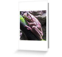 Back Yard Pond Frog Greeting Card
