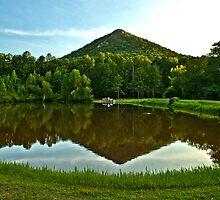 Pinnacle Reflection by Lisa G. Putman