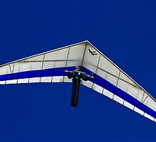 Hang Glider by Noel Elliot