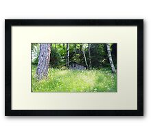House in the Wood Framed Print