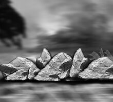 ©DA-HCS The Rocks In Monochrome by OmarHernandez