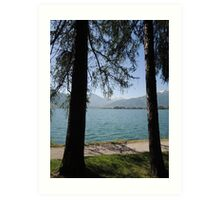 Zell Am See: Lake Through Trees Art Print