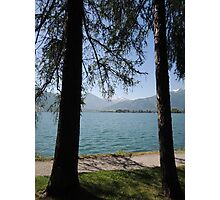 Zell Am See: Lake Through Trees Photographic Print