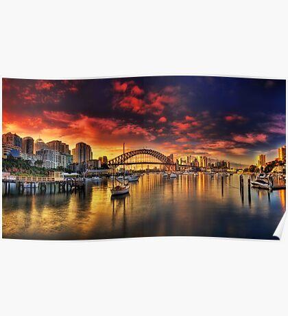 Lavender Bay Sunrise - Panorama  Poster