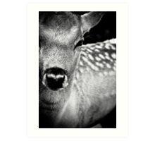 Oh Dear, Oh Deer. Art Print