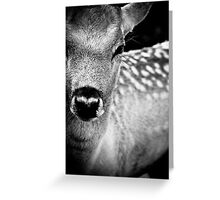 Oh Dear, Oh Deer. Greeting Card