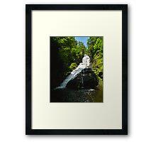 Dingman's Falls Framed Print