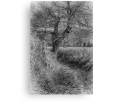 Black and White Lane Canvas Print
