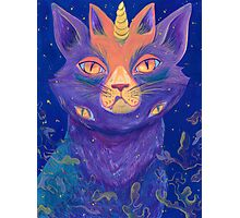 Galactic Kitties: Topaz Photographic Print