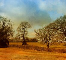 The Country Scene by JulieCoe