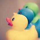 Ducks in a Row by Hilary Walker