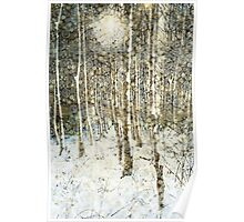 Winter Wood Poster